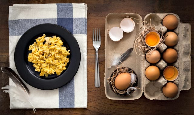 scrambled eggs on plate and carton of eggs