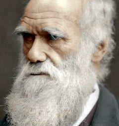 old picture of charles darwin