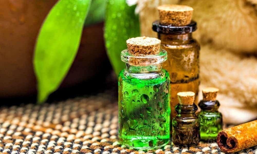 Tea Tree Oil for Beard: Risks vs  Benefits — Beard Resource
