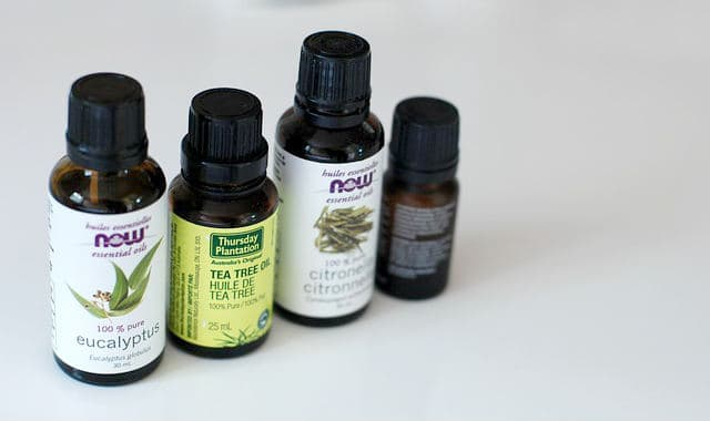 essential oils eucalyptus and tea tree