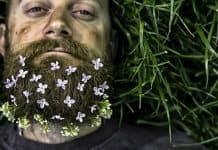 man with a dirty beard with flowers on it