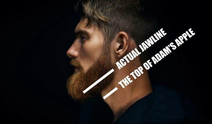 find the beard neckline