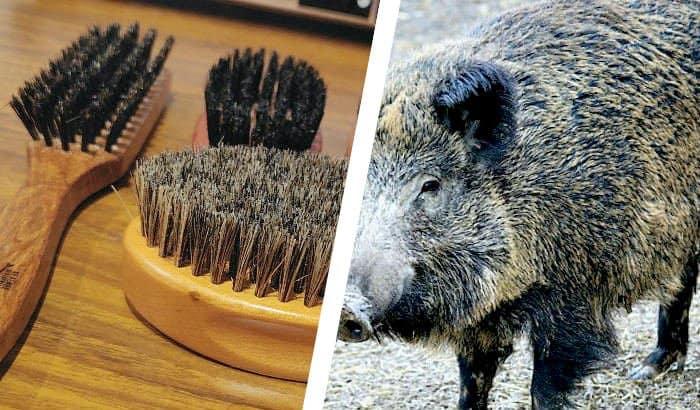 beard brush bristle comparison