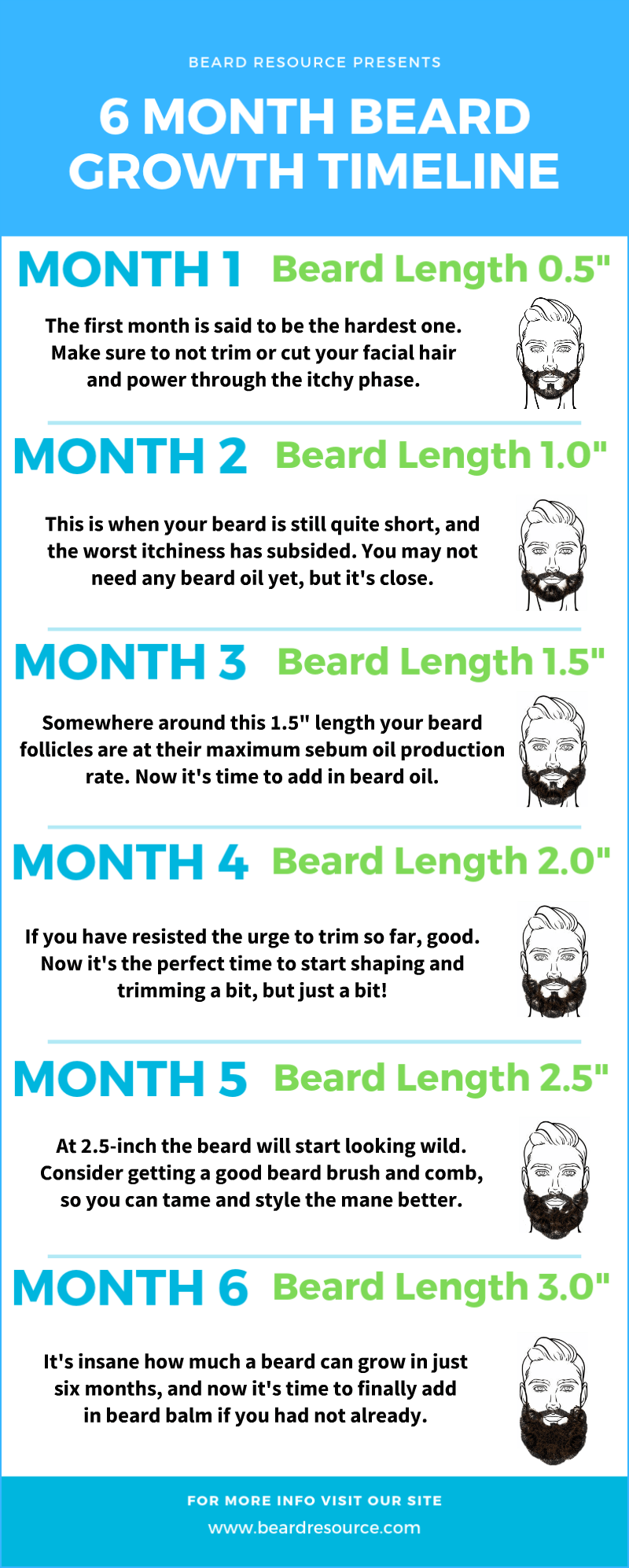 6 month beard growth timeline infographic