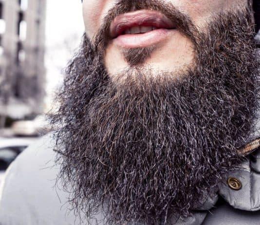 bushy unruly beard