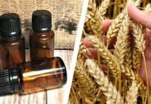 vitamin e oil for beard featured image