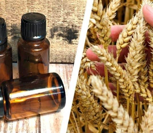vitamin e oil for beard featured image